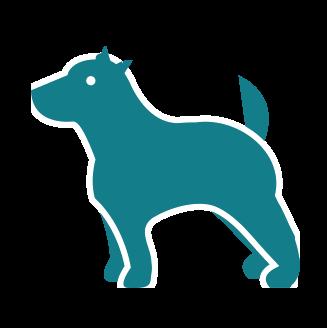 fishing_dogge
