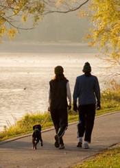 Couple dog walking